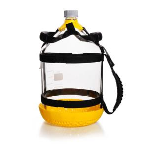 Bottle carrying systems